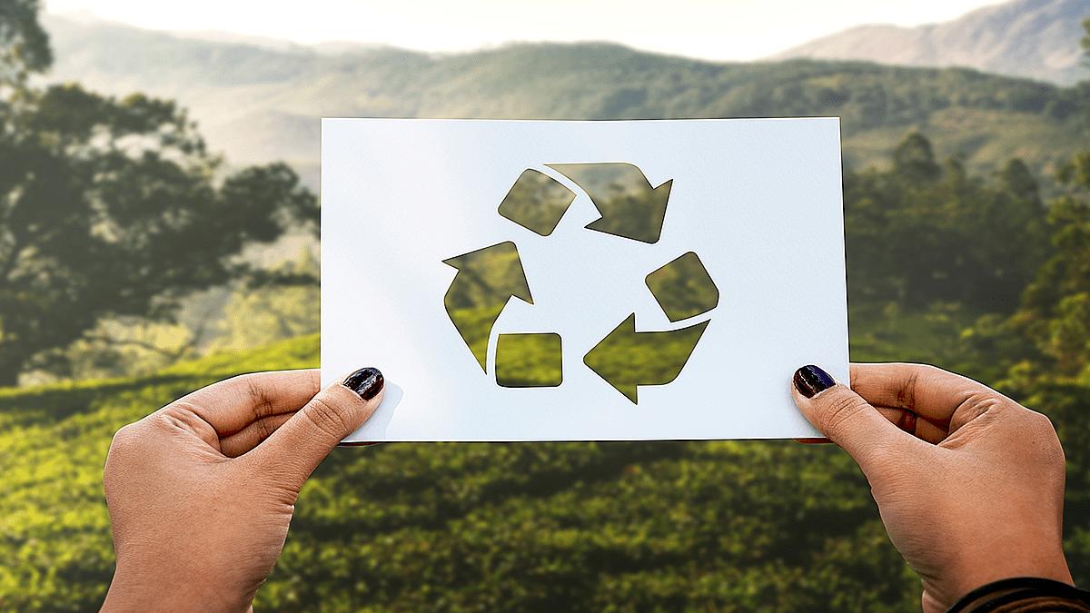 A importância da preservação do Patrimônio Ambiental - Geotech Consultoria